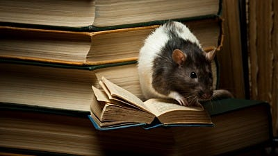 Save Schools & Campuses from Rodent Infestations