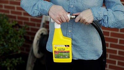 Expert Tips for Using Scent Repellents