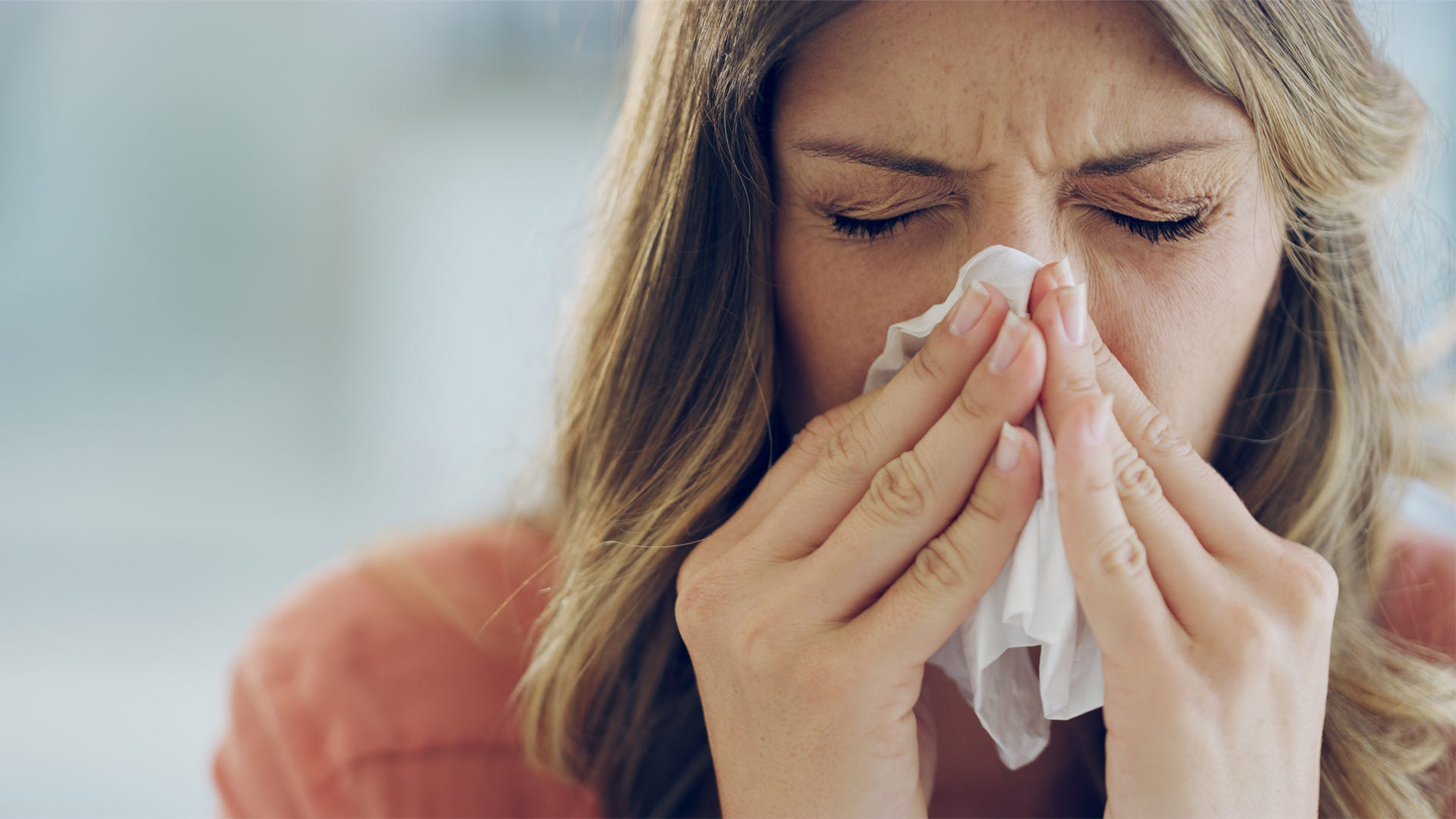 Are Mice Making Your Allergies Act Up?