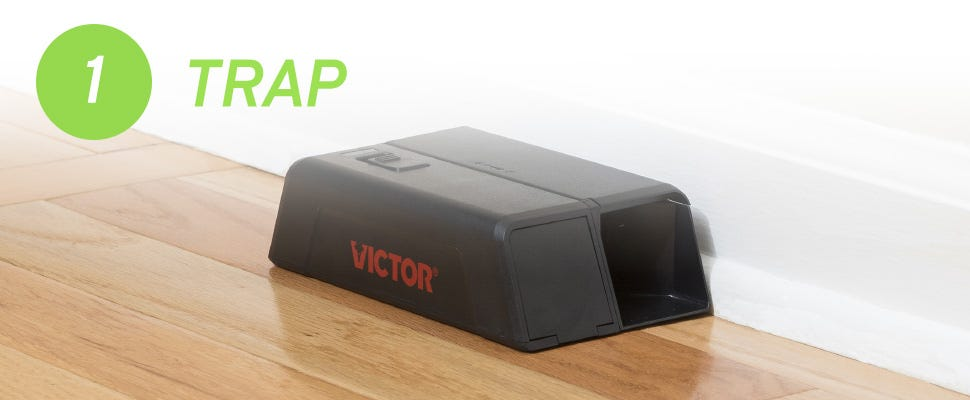 electronic mouse trap set on the floor