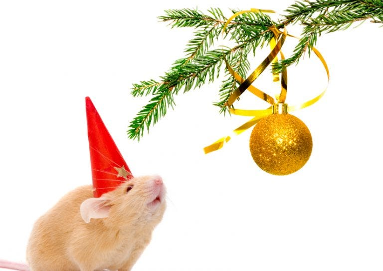 rodent proof for winter christmas mouse