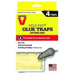 Victor® Hold-Fast® Mouse Glue Tray - 4 Pack